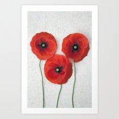 Three Red Poppies III Art Print