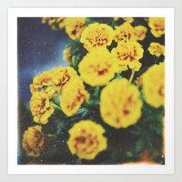 Yellowish Art Print