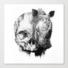 rhinoceros skull head Canvas Print