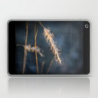 Evening Grass Laptop & iPad Skin