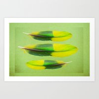 FEATHER FEATURE Art Print
