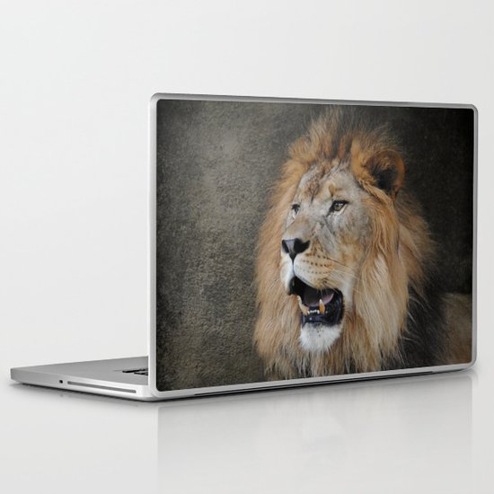 Male Lion II Laptop & iPad Skin