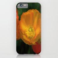 iPhone & iPod Case featuring campari orange by Lizzy Pe