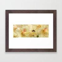 Bee My Honey Framed Art Print