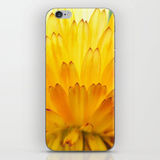 Overwhelming Beauty iPhone & iPod Skin