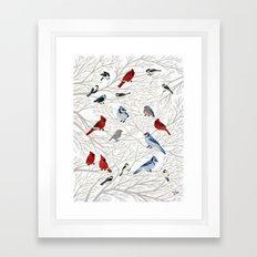 Winter Birds Framed Art Print