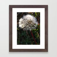 decorated dandelion Framed Art Print