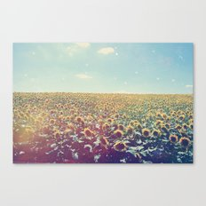 Dreamy Sunflowers Canvas Print