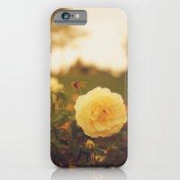 Yellow Roses iPhone 6 Slim Case