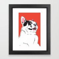 Boston Terrier Side-Eye Framed Art Print