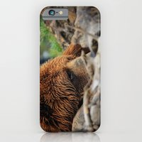 Kodiak Bear iPhone 6 Slim Case