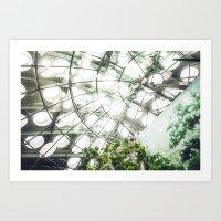 Heliconius sara vs. The Faux Rainforest Art Print