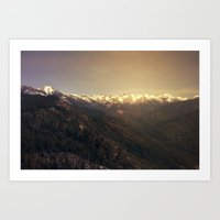 Sequoia National Park Art Print