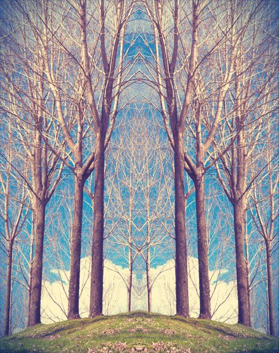 The nature of symmetry  Art Print