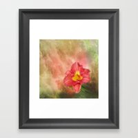 Beautiful Day Lily Framed Art Print
