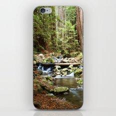 Crystal Stream iPhone & iPod Skin