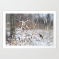 Let it Snow in the Woods Art Print