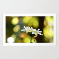 flower with insect Art Print