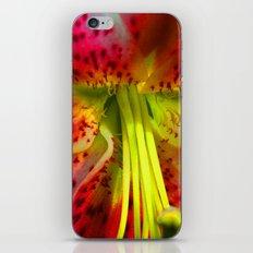 bold iPhone & iPod Skin