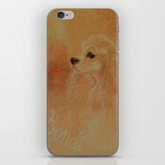 American Cocker Spaniel iPhone & iPod Skin