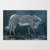 blue zebra Canvas Print