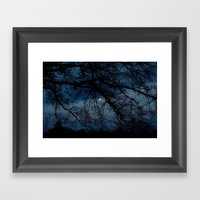 Through The Branches Framed Art Print