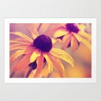 Yellow Flower - Rudbecki… Art Print