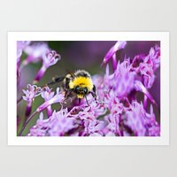 bee Art Prints featuring Bee by Dora Birgis