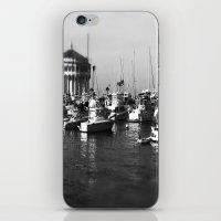 Catalina Harbor iPhone & iPod Skin
