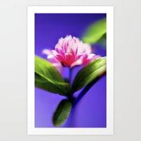 Purple Glow Art Print