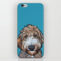 Seamus The Labradoodle iPhone & iPod Skin