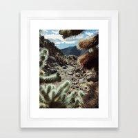 Cholla Frame Framed Art Print