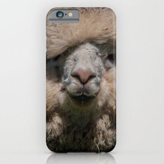 AL PACONE iPhone & iPod Case