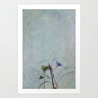 Morning Glory Flower Art Print