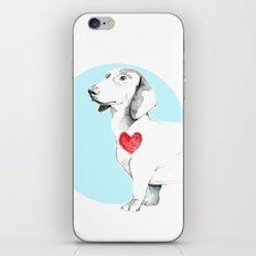 Long dog iPhone & iPod Skin