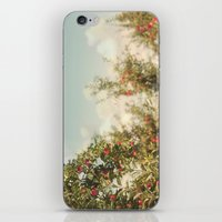 Orchard Blue iPhone & iPod Skin