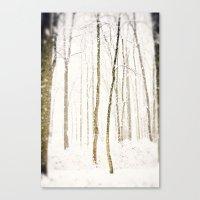 Snowy Trail Canvas Print