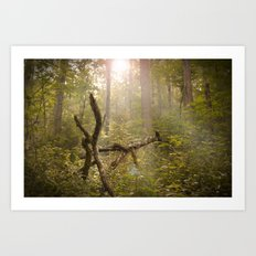 Magical Appalachia Art Print