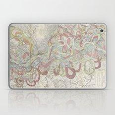 Beautiful Map Of The Low… Laptop & iPad Skin