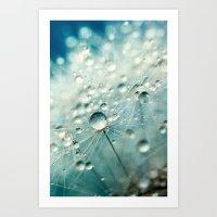 Dandelion Starburst Art Print