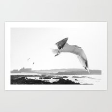 Fly high Art Print