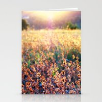 Fields of Gold Stationery Cards
