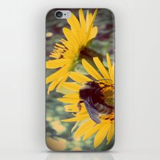 The Beez Knees iPhone & iPod Skin