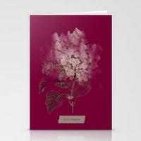 HYDRANGEA 2 Stationery Cards