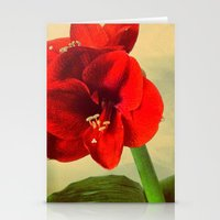 My Christmas Flower Stationery Cards