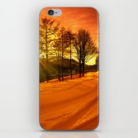 Winter World iPhone & iPod Skin