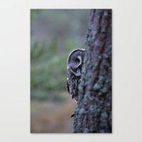 PEERING GREAT GREY OWL Canvas Print