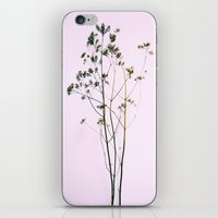 Branch Out iPhone & iPod Skin