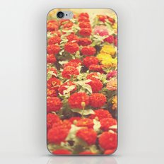 I'd like to lie in a bed of flowers iPhone & iPod Skin