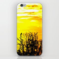 lonely crow iPhone & iPod Skin
